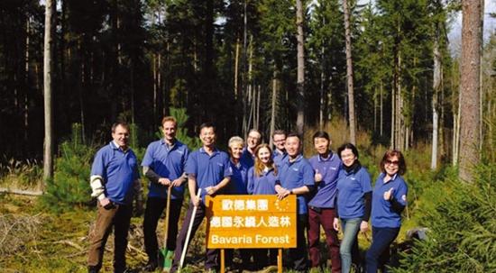 中国知名板材品牌欧德环保无害板材 打造无毒家居