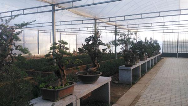 同益空气能热泵采暖应用之温室大棚:山东园林花卉采暖