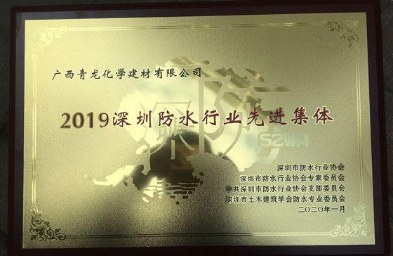 """青龙公司荣获""""2019深圳防水行业先进集体奖"""""""