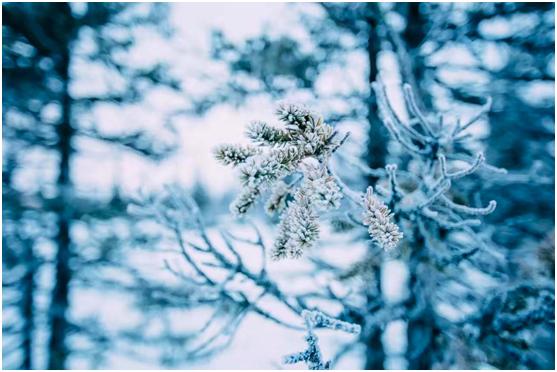 霜降时分 百凯启程与您共度温暖的家庭生活